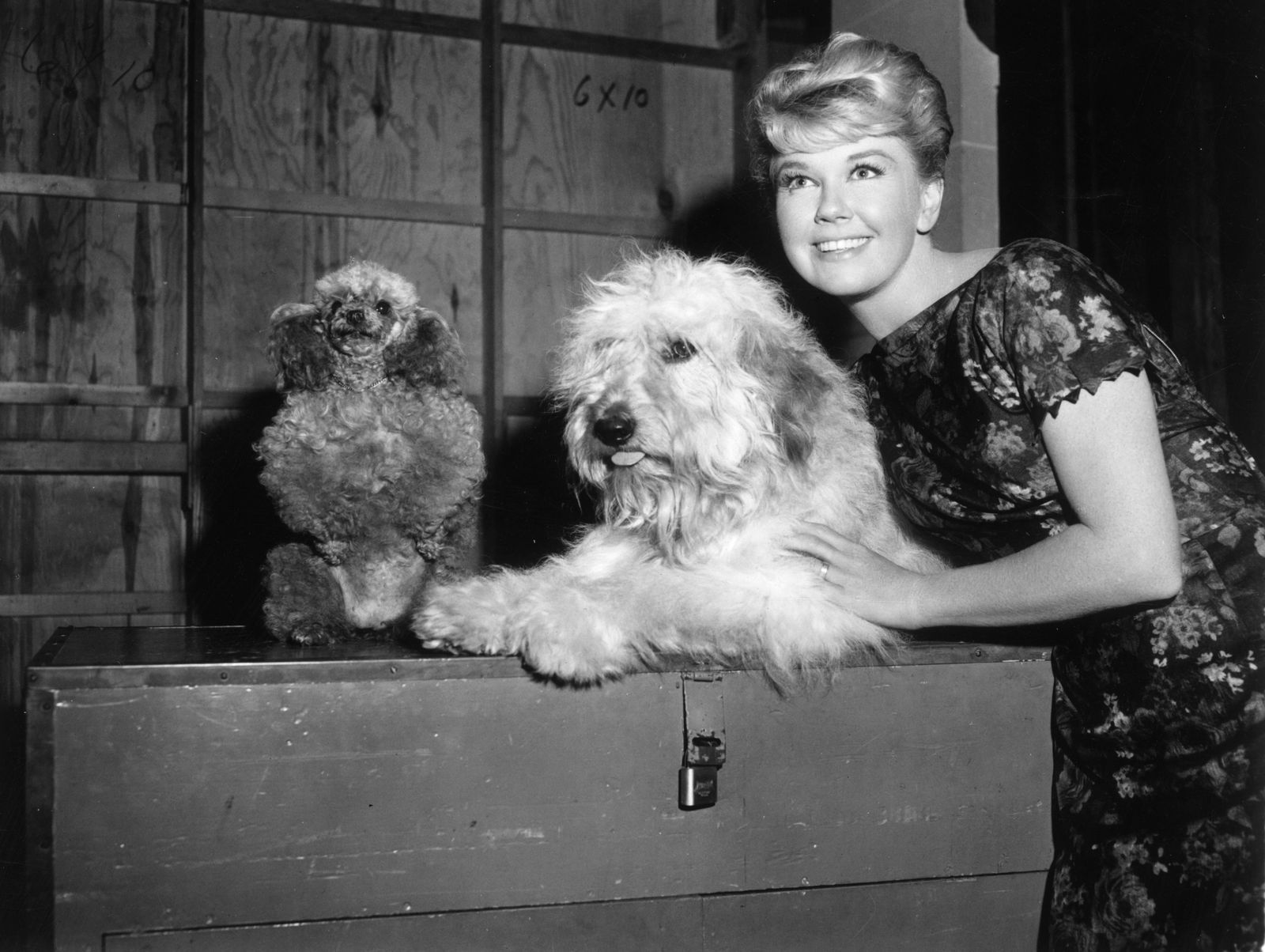 Doris Day films and songs from Calamity Jane to Qu
